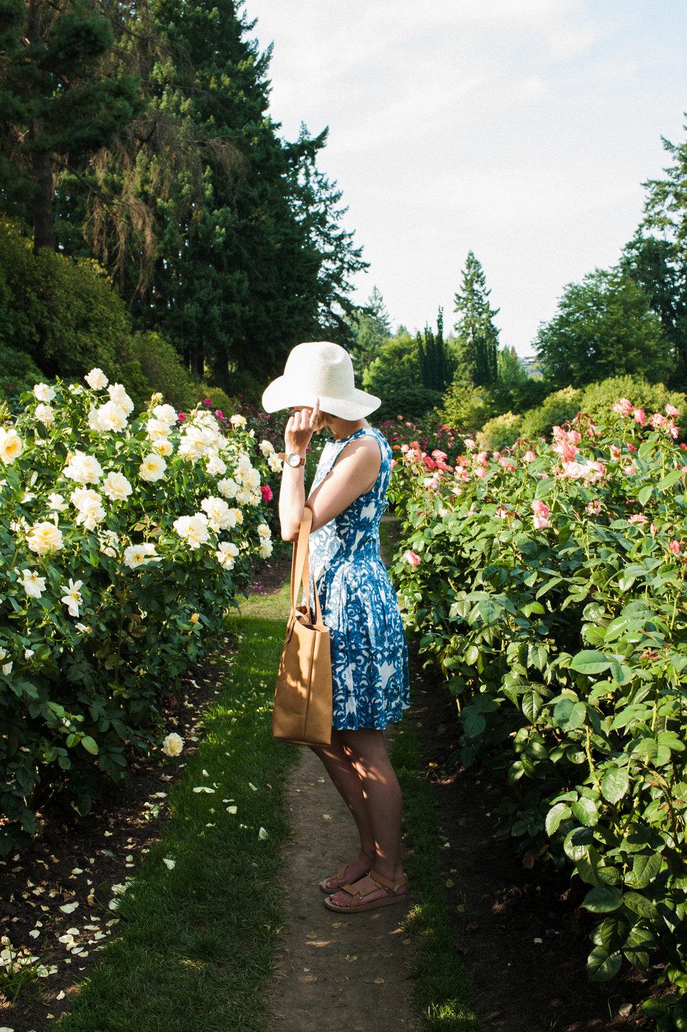 rosegarden-3.jpg