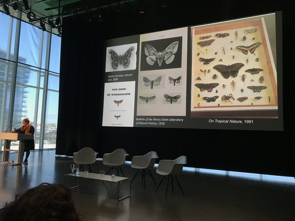 We also attended the symposium surrounding Mark Dion's retrospective at the ICA in Boston, and our very own Rebecca Uchill, Undisciplinary-Disciplinary Interdisciplinary Liaison gave the concluding remarks at the symposium!