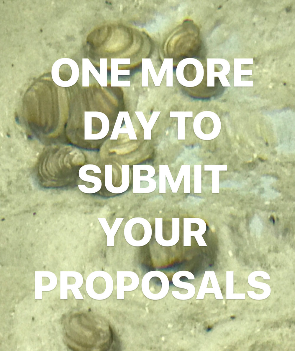 We received a lot of proposals for the Student Art Project, and our selection committee is reviewing applications now!