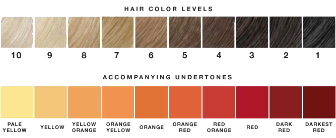 hair color levels.png