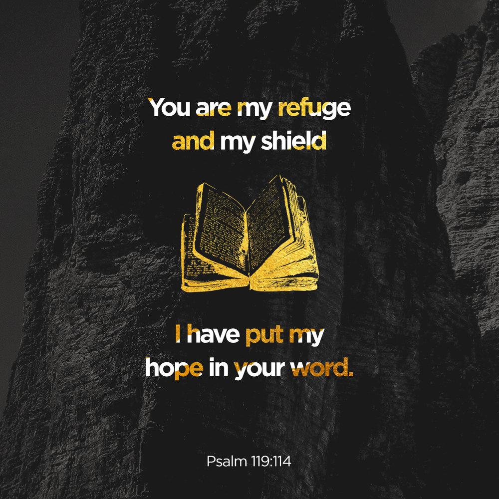 ScriptureArt_0616_-_Psalm119_114.jpg