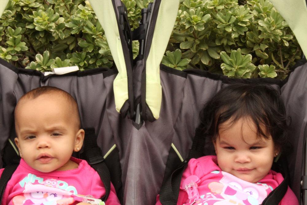 ff-twins.jpg
