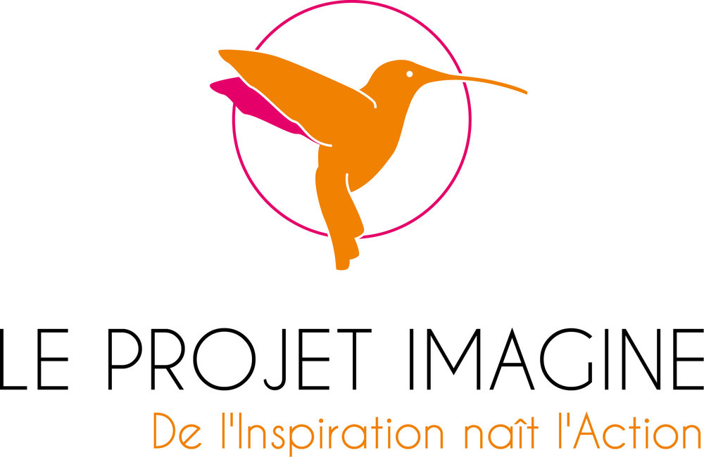 LE PROJET IMAGINE.jpg