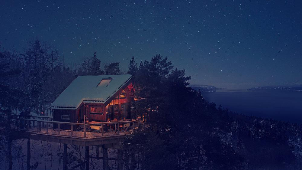 Tretopphytter-natt-foto-Ugleredet2.jpg