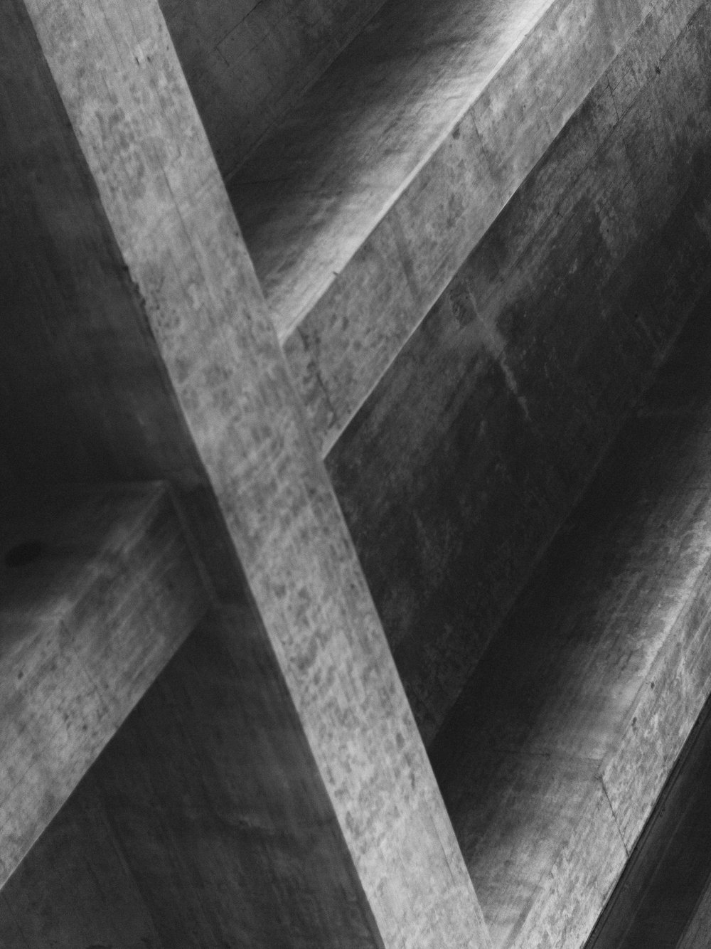 TWP-KarlAntonBjorkman--10.jpg