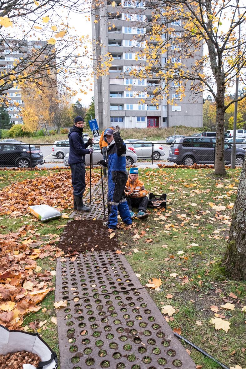haugerudbekken_beplantning-27.jpg