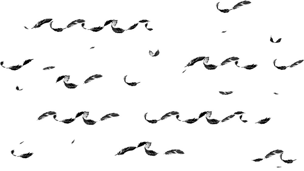 ronja-pattern-feathers.jpg