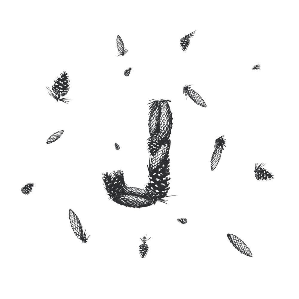 pinecomb-horns.jpg