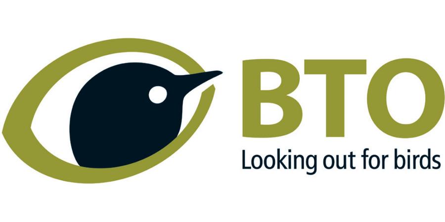 BTO News.jpg