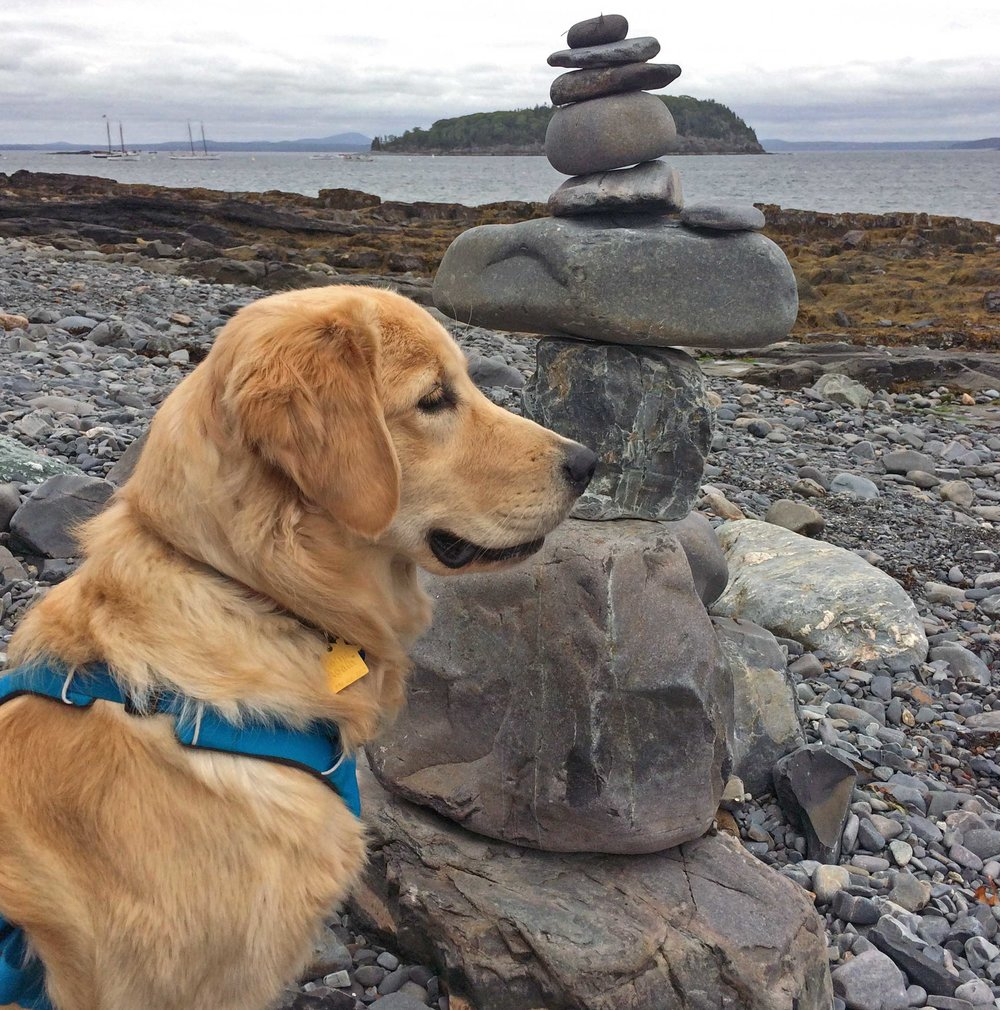 Lucy doing her best balancing rock impression