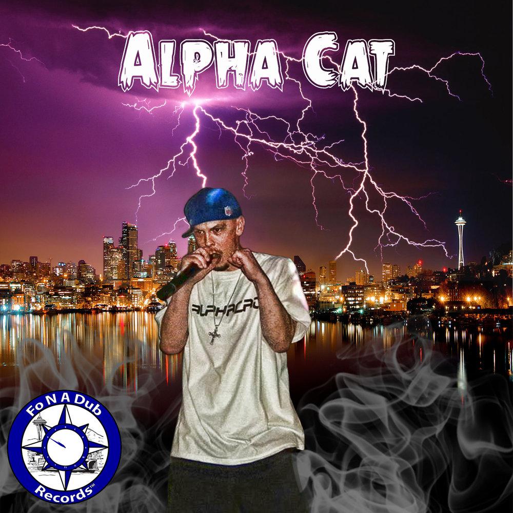 alphacat1 (1).jpg