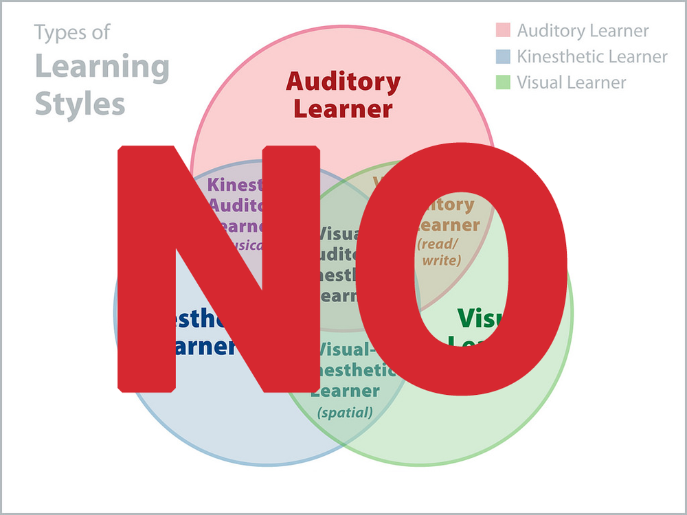 learning style NO.png