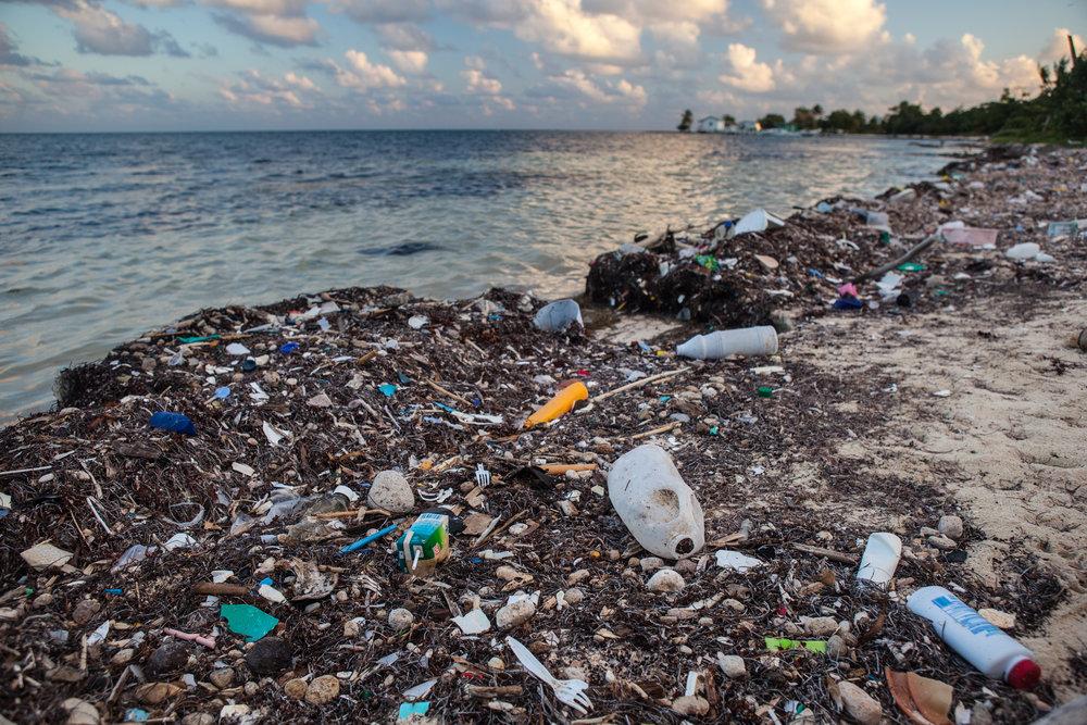 OCEAN PLASTICS -