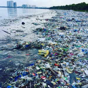Plastic trash overwhelms beach at Freedom Island protected mangrove area, near Manila, Philippines, July 2016. Photo by: Dianna Cohen, Plastic Pollution Coalition