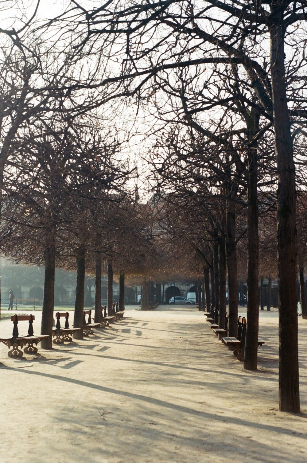 Paris, January 2017