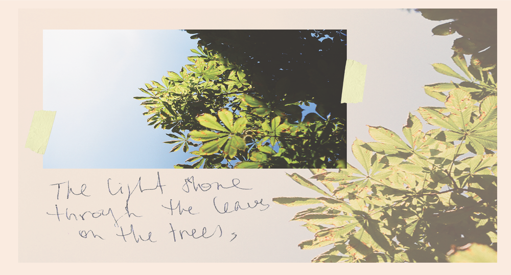 chasing_light_in_provence_4.png