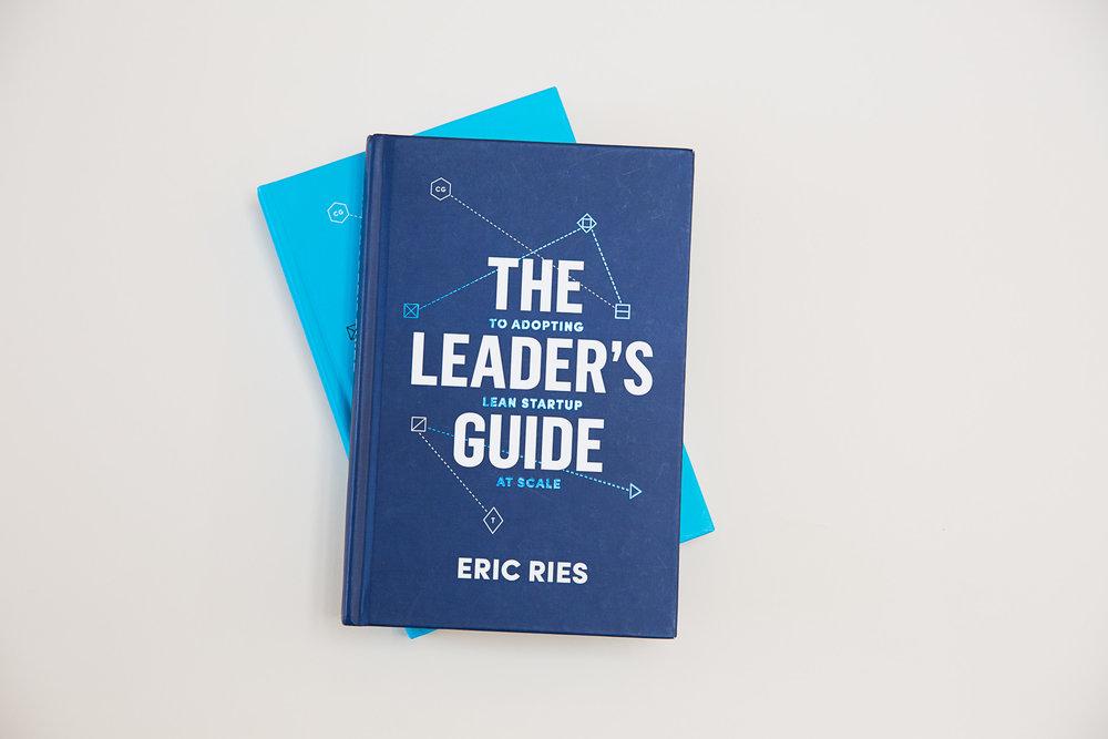 Anagraph-leadersguide-dark cover.jpeg