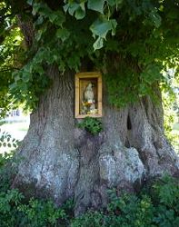 Another Marienlinde in Linden, Bavaria, photo:  Hortitours
