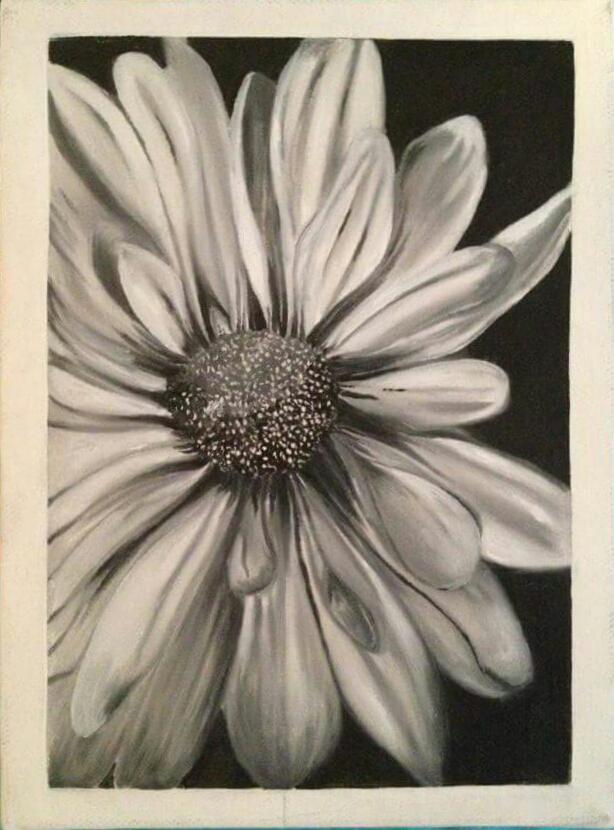flower.13..jpg