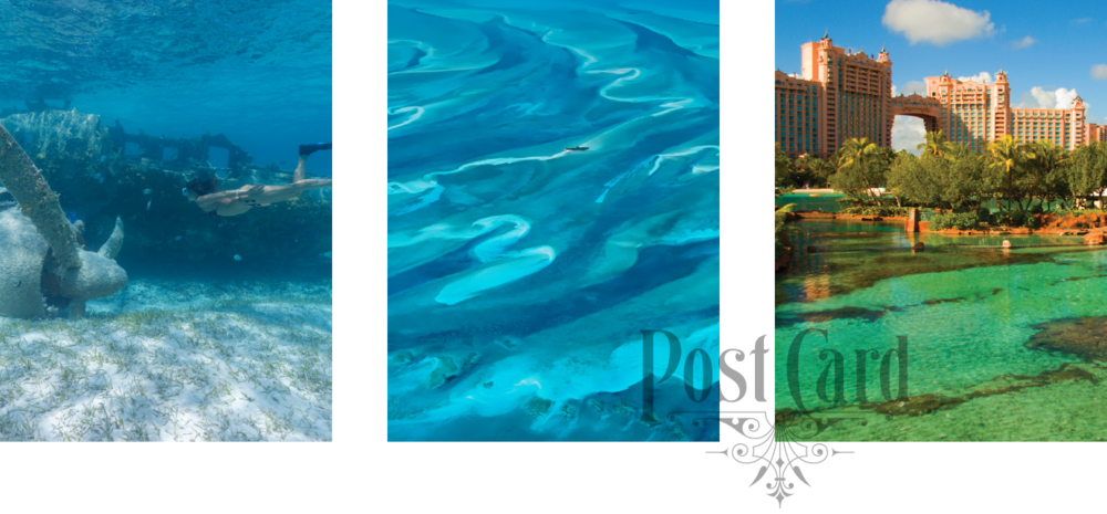 LADYJ-Cruise-Destination-Nassau-collage.png