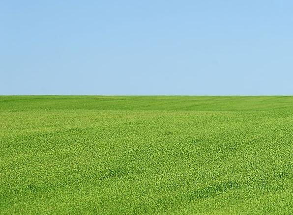 Grassy Slope.jpg