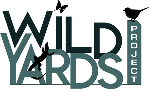 The Wild Yards Project Newsletter - Sign up to learn about upcoming events, helpful resources and more!