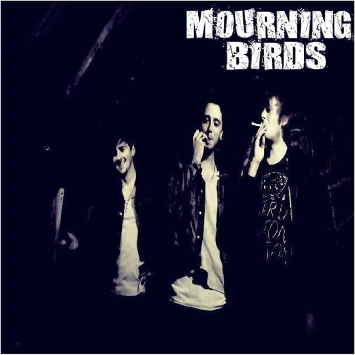 Mourning Birds
