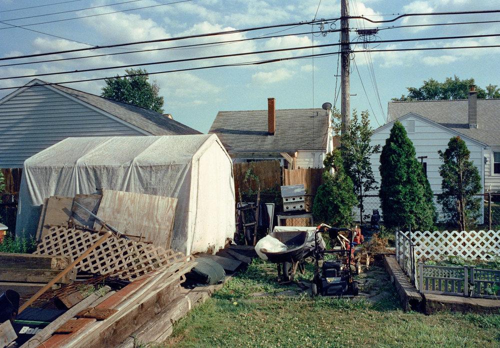 Aunt Bea's Backyard