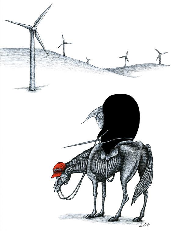 Donald Quixote