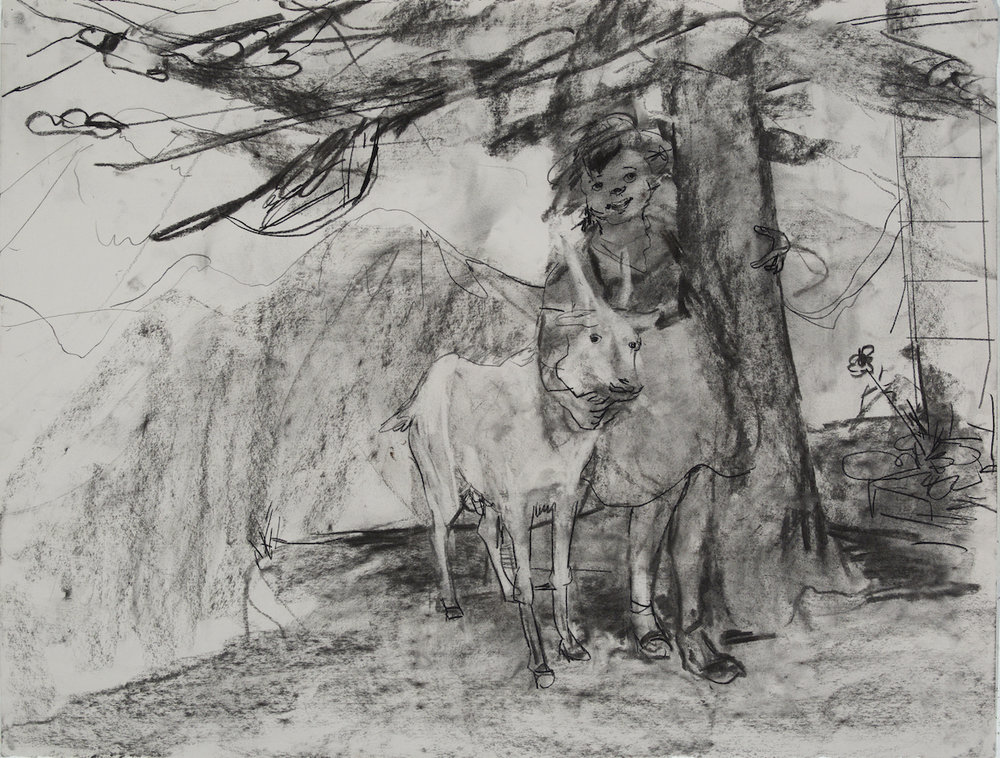 Hiedi but Goat Hiedi charcoal 28 by 40 inches 2015.jpg