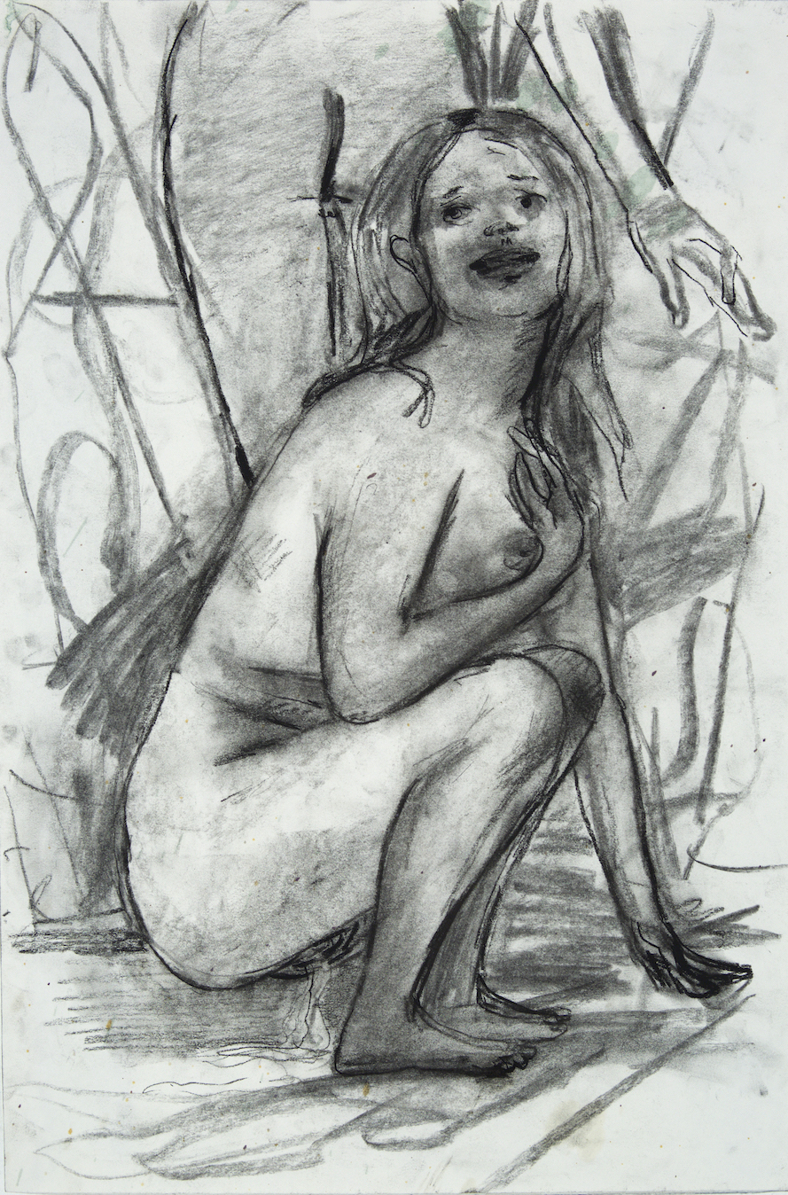 Pising in a River charcoal on paper 18 by 24 inches 2016.jpg