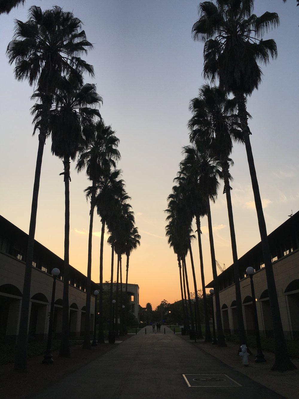 Stanford Day 1.JPG