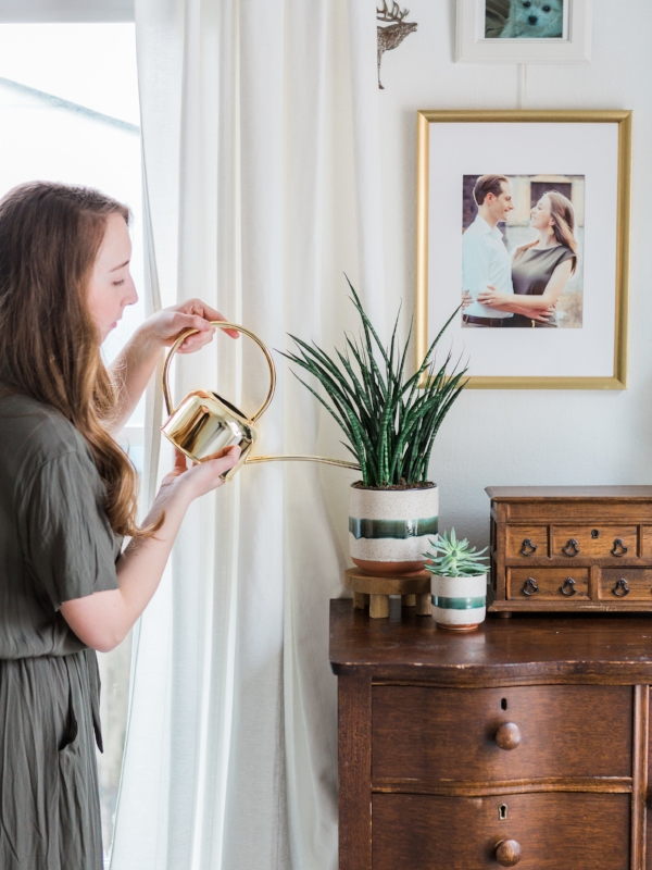 Modern, gold watering can for indoor plants from Foragedhome.com
