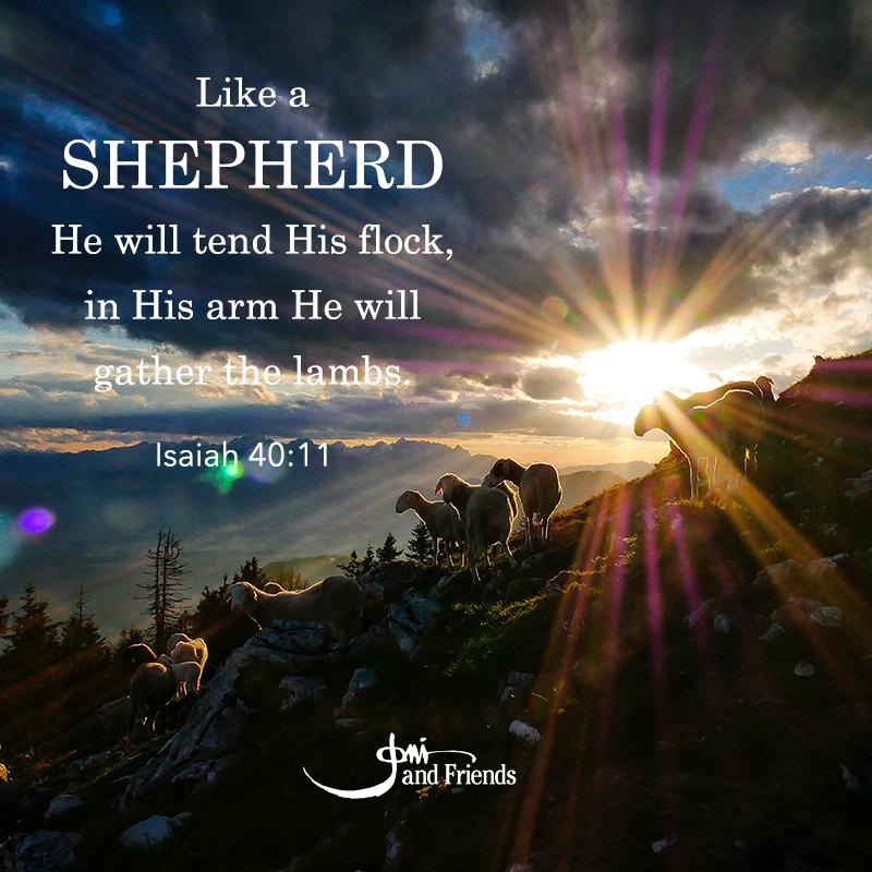 Isaiah 40 11.jpg