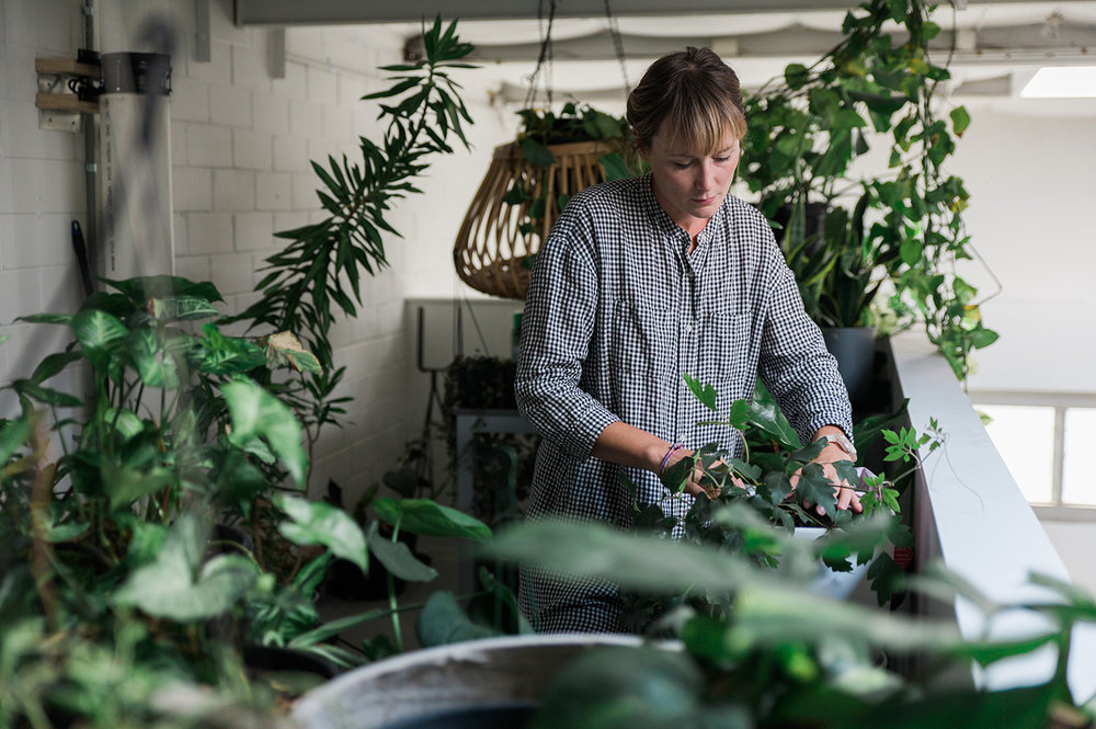Read my article on Anna Macoboy, owner of Wilding, on  The Plant Hunter.