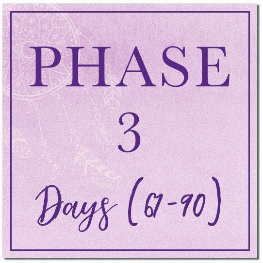 phase-3.png
