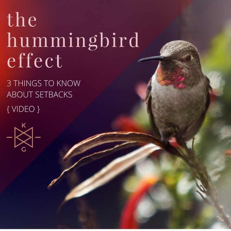 the hummingbird effect_ video