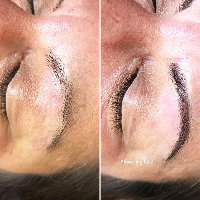 Very first time for our customer to get Microblading done! D She was very cautious and nervous to get them done but with our thorough consultation and answers to her questions, our customer left the store with 1000% satisfaction !  Come in or give us a call at 516-918-9333  30 Main St. Port Washington NY, 11050 . . . . . #BloomingLash #PortWashington #microblading #makeuptatto #eyebrowtatto #eyelinertatto #fullliptatto #semipermanent #eyelashextension #longisland #nymaketatto #likes #follow #NewYork  #반영구 #뉴욕 #속눈썹
