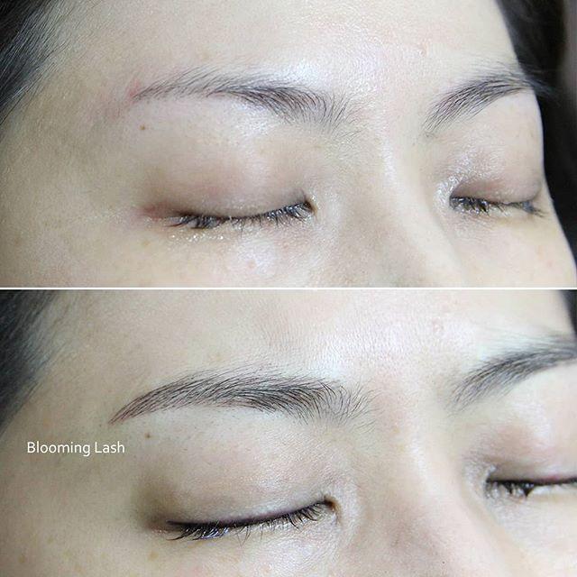 Brows Brows Brows 👏 . . . . . #microblading #makeuptattoo #eyebrowtattoo #eyelinertattoo #minklashes #silklashes #lashlift #lashtint #bloominglash #portwashington #fullliptattoo #semipermanent #eyelashextension #like #beauty #facial #longisland #nymaketattoo #반영구 #뉴욕 #속눈썹
