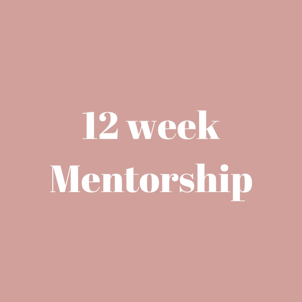 12 week Mentorship.png