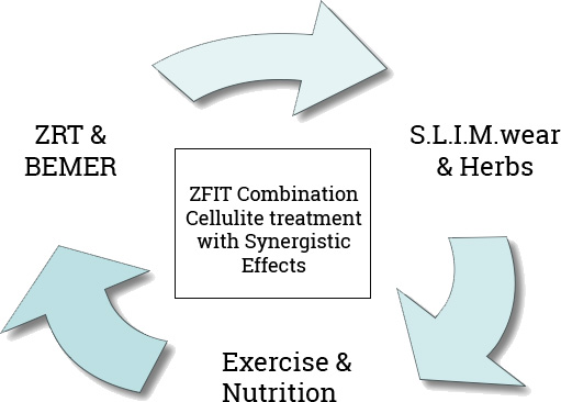 wellness_diagram1.jpg