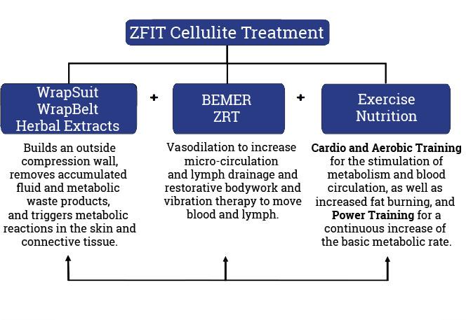 wellness_diagram2.jpg