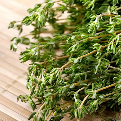 thyme plants and thyme leaves