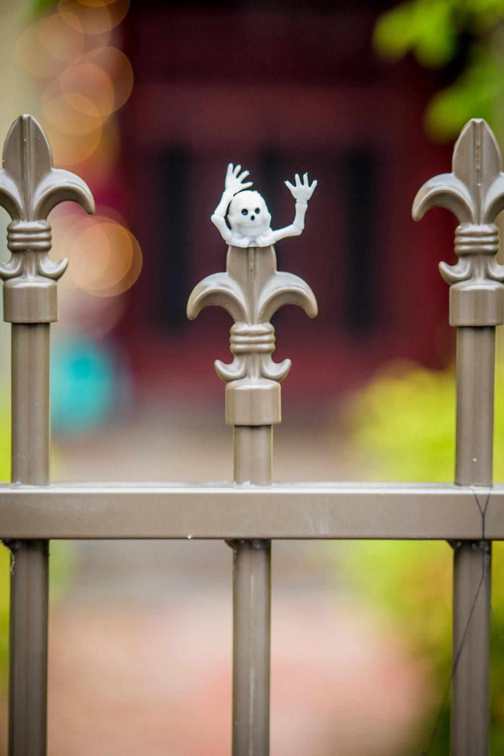 Oct 2017 Halloween 106.jpg