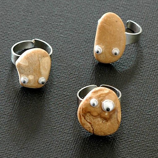 Pet Rock Rings