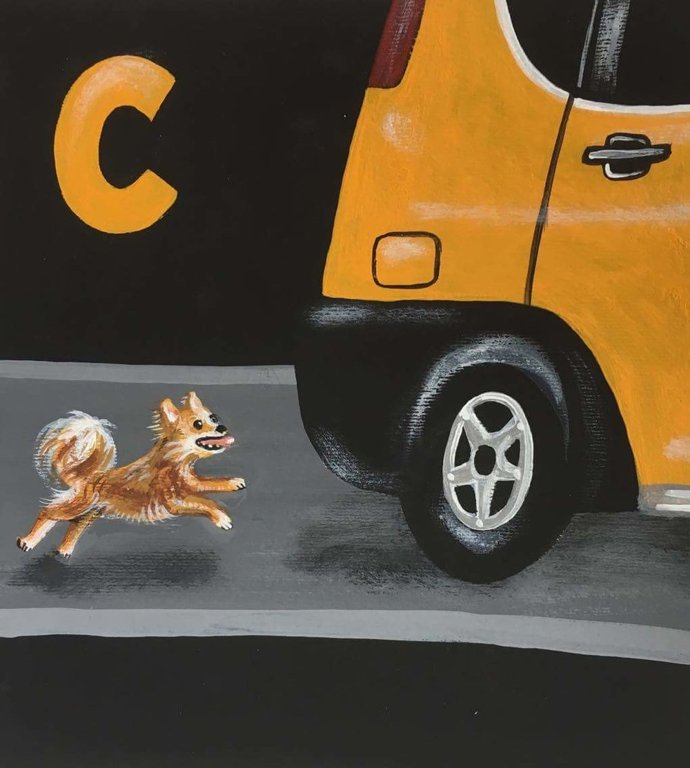 chase a Chihuahua chasing a Chang Feng