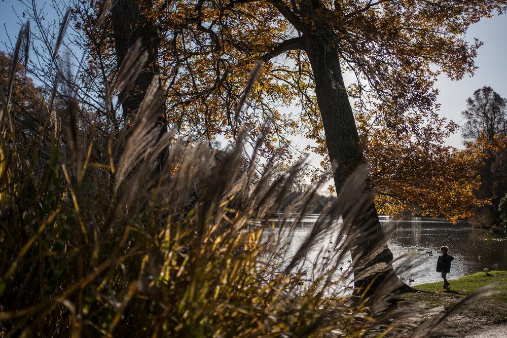Autumn 029.JPG