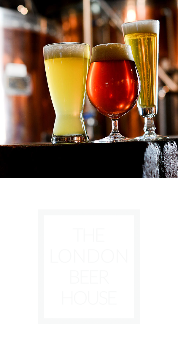 HospPI_features_london beer.png