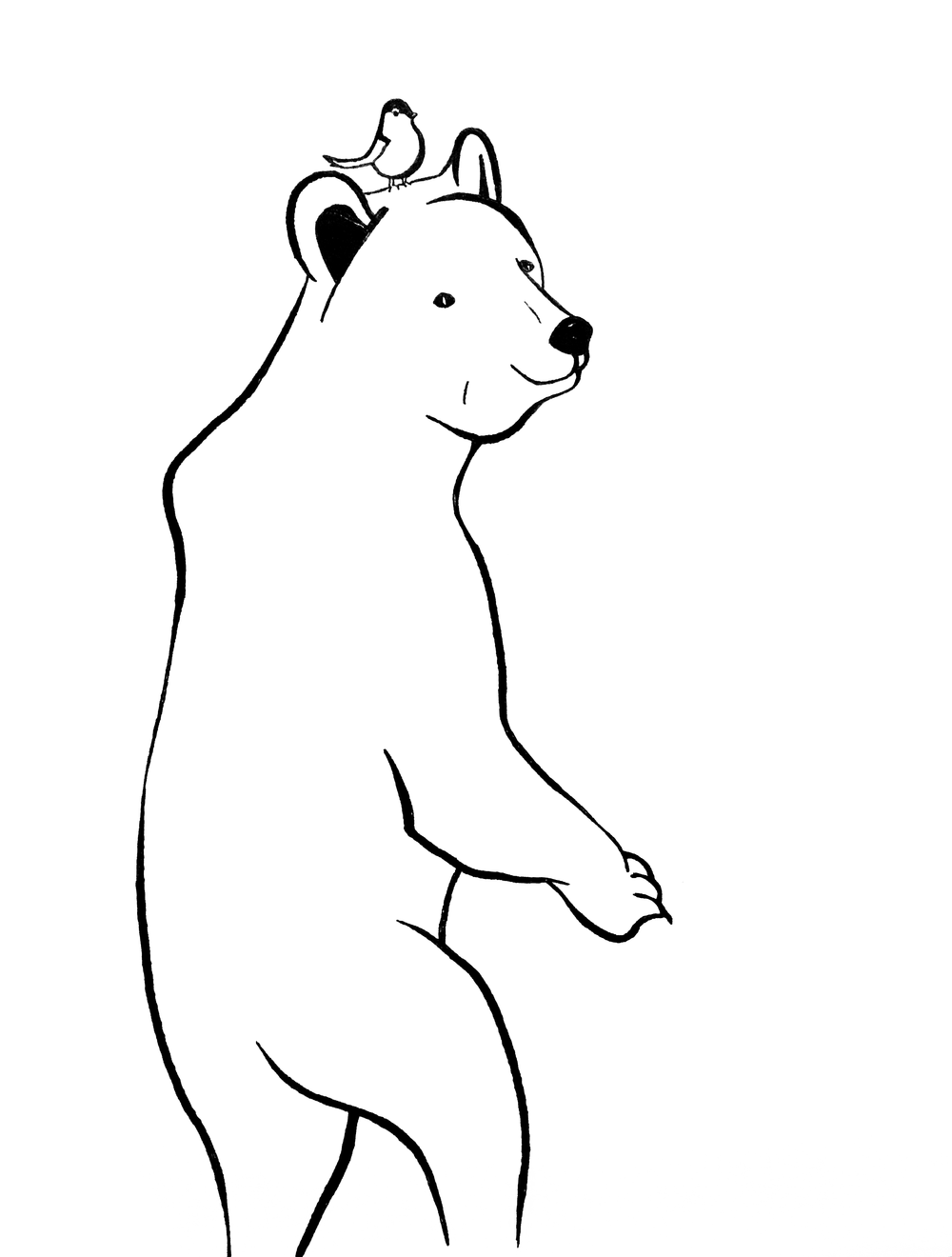 Karhu ja lintu.png