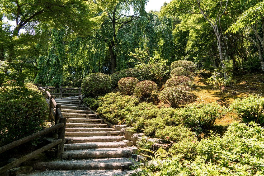 Gardens of Japan - Explore some of Japan's finest gardens. You'll visit the 'Three Great Gardens', take a bonsai workshop as well as see a host of iconic city highlights.